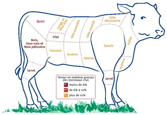 Le veau est plus tendre que le boeuf