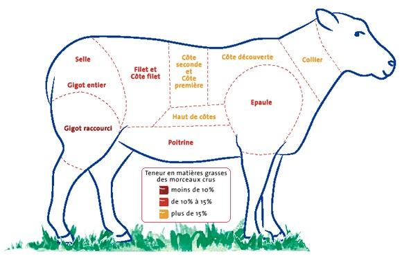 L'agneau est une des viandes les plus riches en lipides.