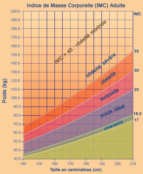 Tableau d'estimation du poids de forme chez l'adulte
