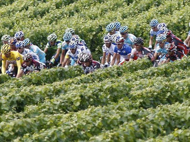 Tour de France et Route des Vins...Tout se comprend!