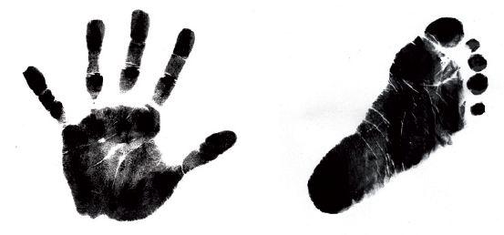 L'indispensable mesure impédancemétrique avec 4 points de contact : Pieds-Mains